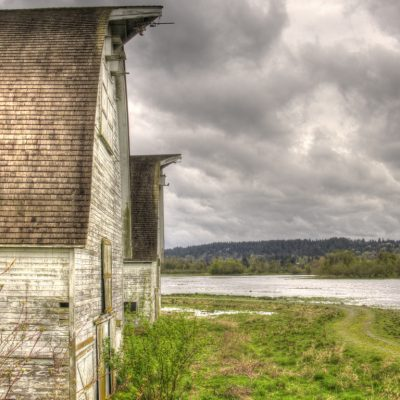 Nisqually Wildlife Refuge Barns 1