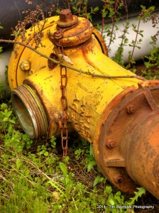 Retired Hydrant